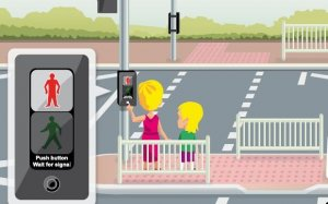 Approval for the Puffin Crossing to be implemented